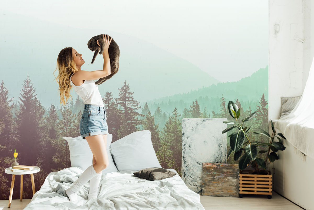 Fototapeta premium obraz tajemniczego mglistego lasu